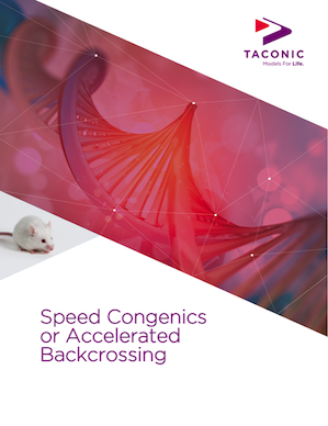 speed-congenics-or-accelerated-backcrossing